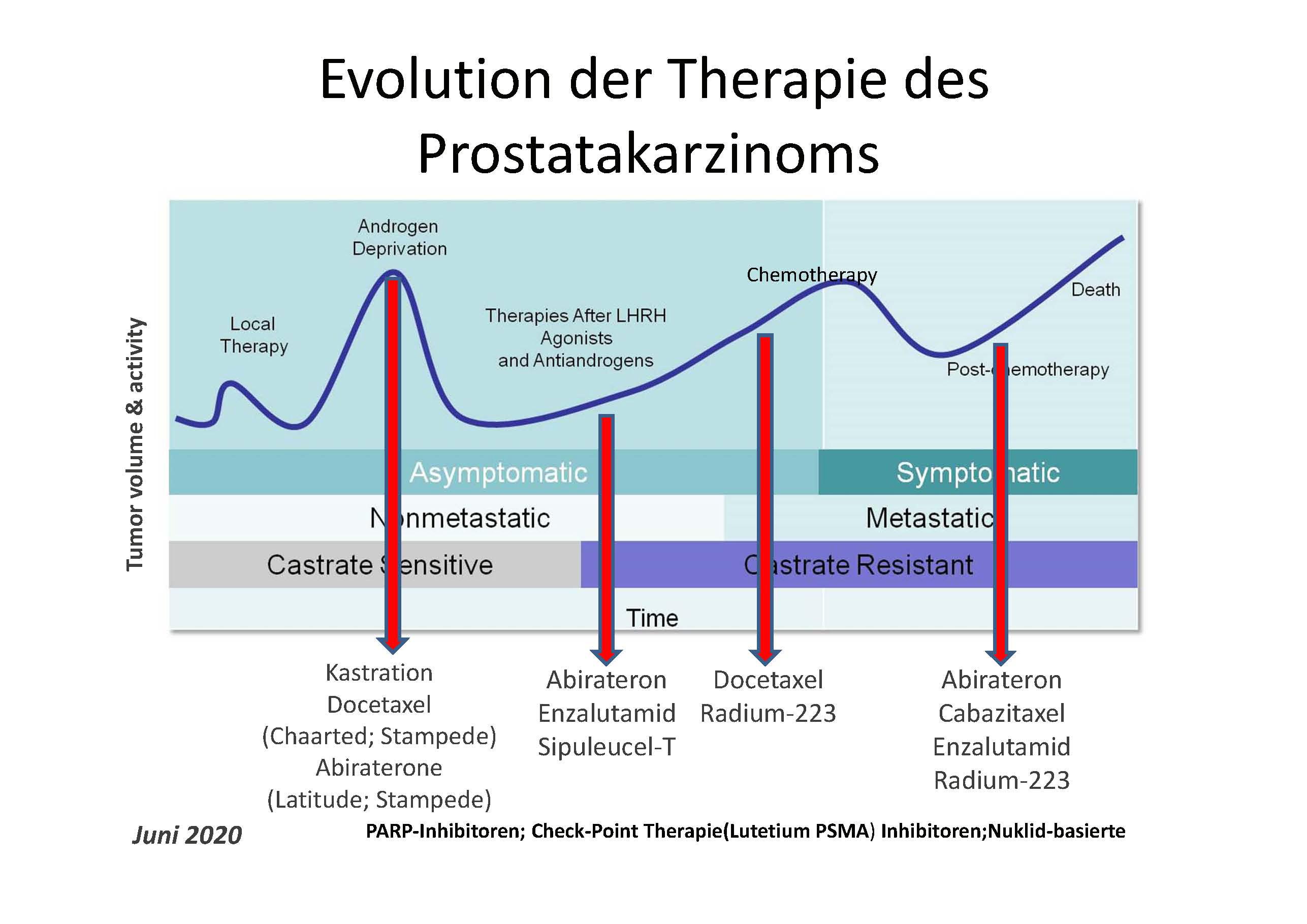 Entwic klung Therapie Prostatakrebs